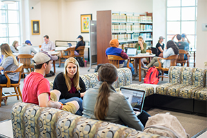 Students at the university library