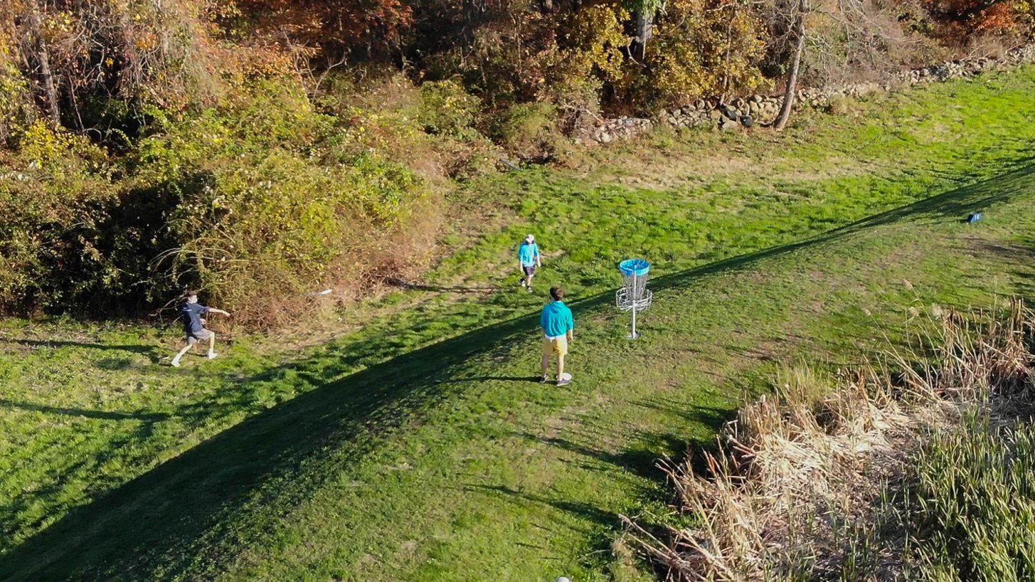 Three students play disc golf on RWU's new course