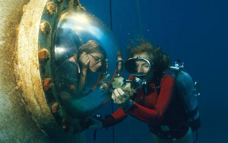 Marine Biologist Employment   Marine World