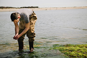 Student examines seaweed at shoreline.