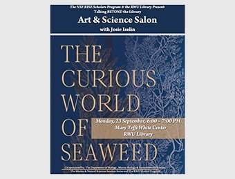 The curious world of seaweed poster