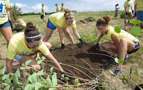 Students plant a vegetable garden